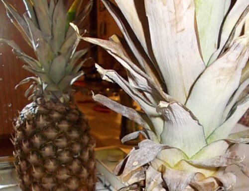 Ananas con la panna